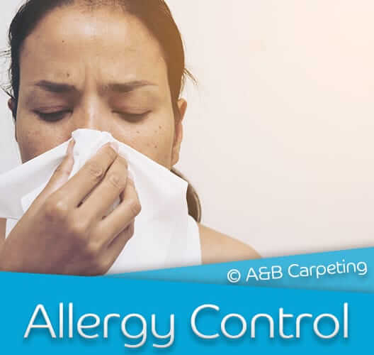 Allergy Control - Brooklyn
