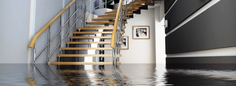 Water Damage Repair - Brooklyn